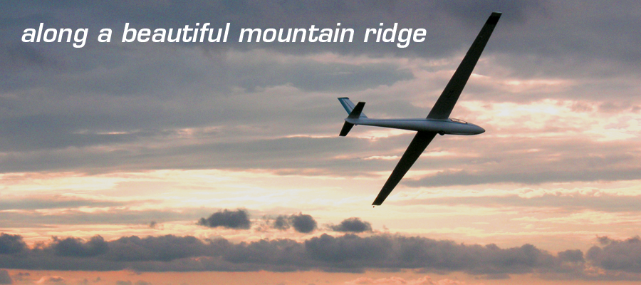 A glider ridge soars in front of a beautiful sunset